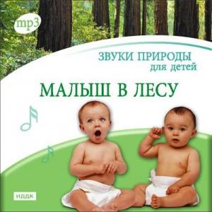 Звуки природы для детей - Малыш в лесу