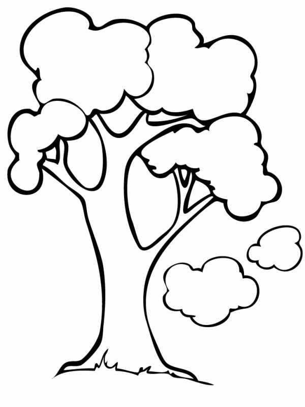Хвойные деревья раскраски для детей – Раскраски Дерево ...