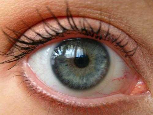 Какой был цвет глаз у иисуса