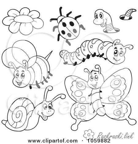 Картинки насекомые раскраски для детей – Раскраски ...